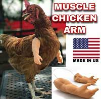 Chicken Arms