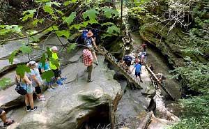 Turkey Run State Park Trail Ladders